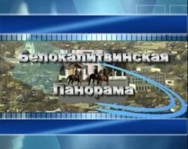 Выпуск информационной программы Белокалитвинская панорама от  22 01 2019 г