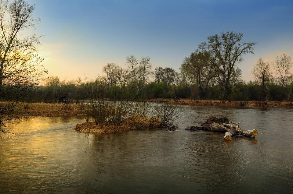 Подтоплений не будет: специалисты дают благоприятные прогнозы в период половодья на Дону