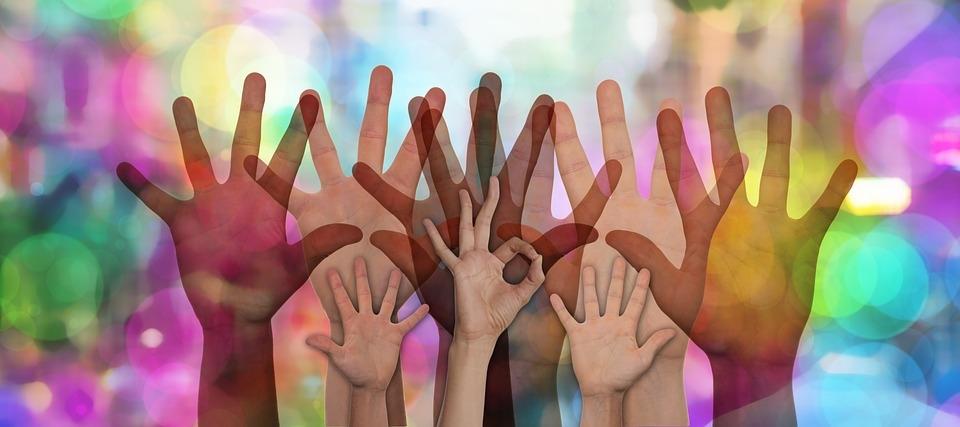 Донской регион лидирует по количеству «профессиональных волонтеров»