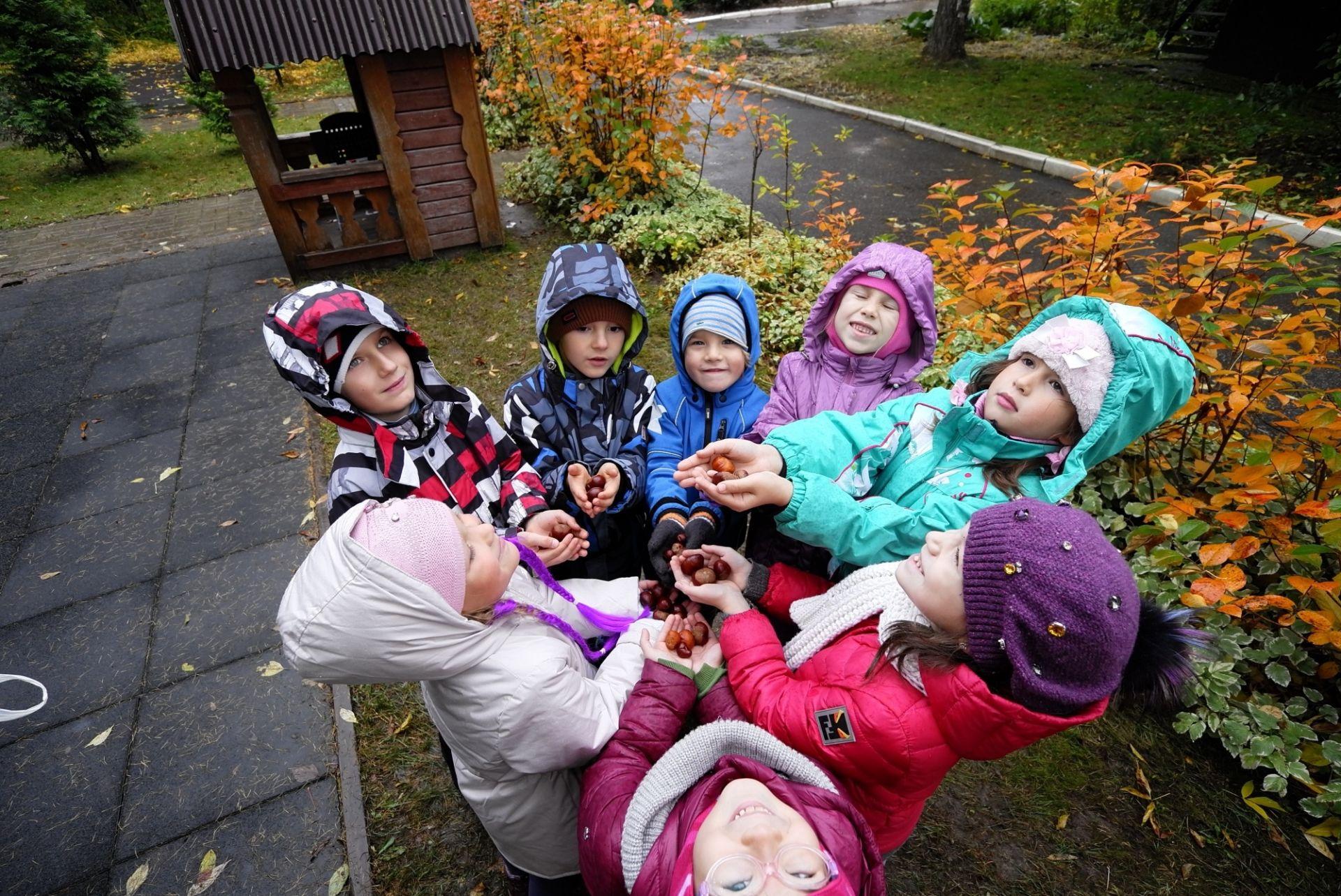 Минпросвещения России запустит портал по реализации мероприятий Десятилетия детства