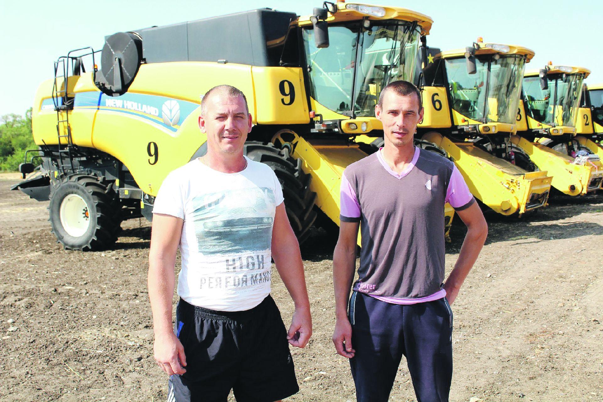 На полях Белокалитвинского района подходит к концу уборка озимых зерновых культур