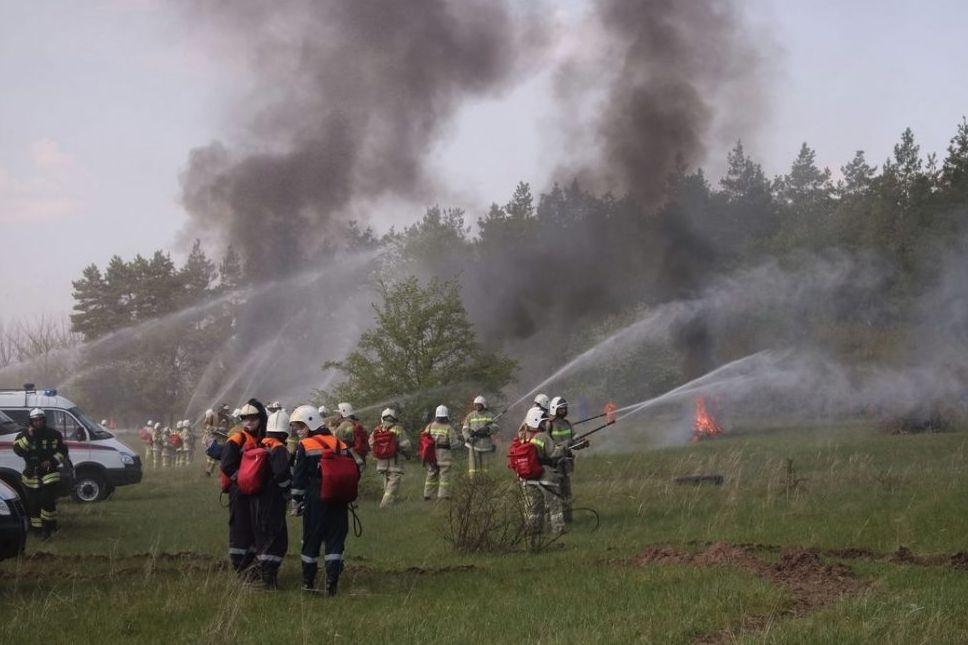 «Лесохранитель» на страже зеленых насаждений Донского края