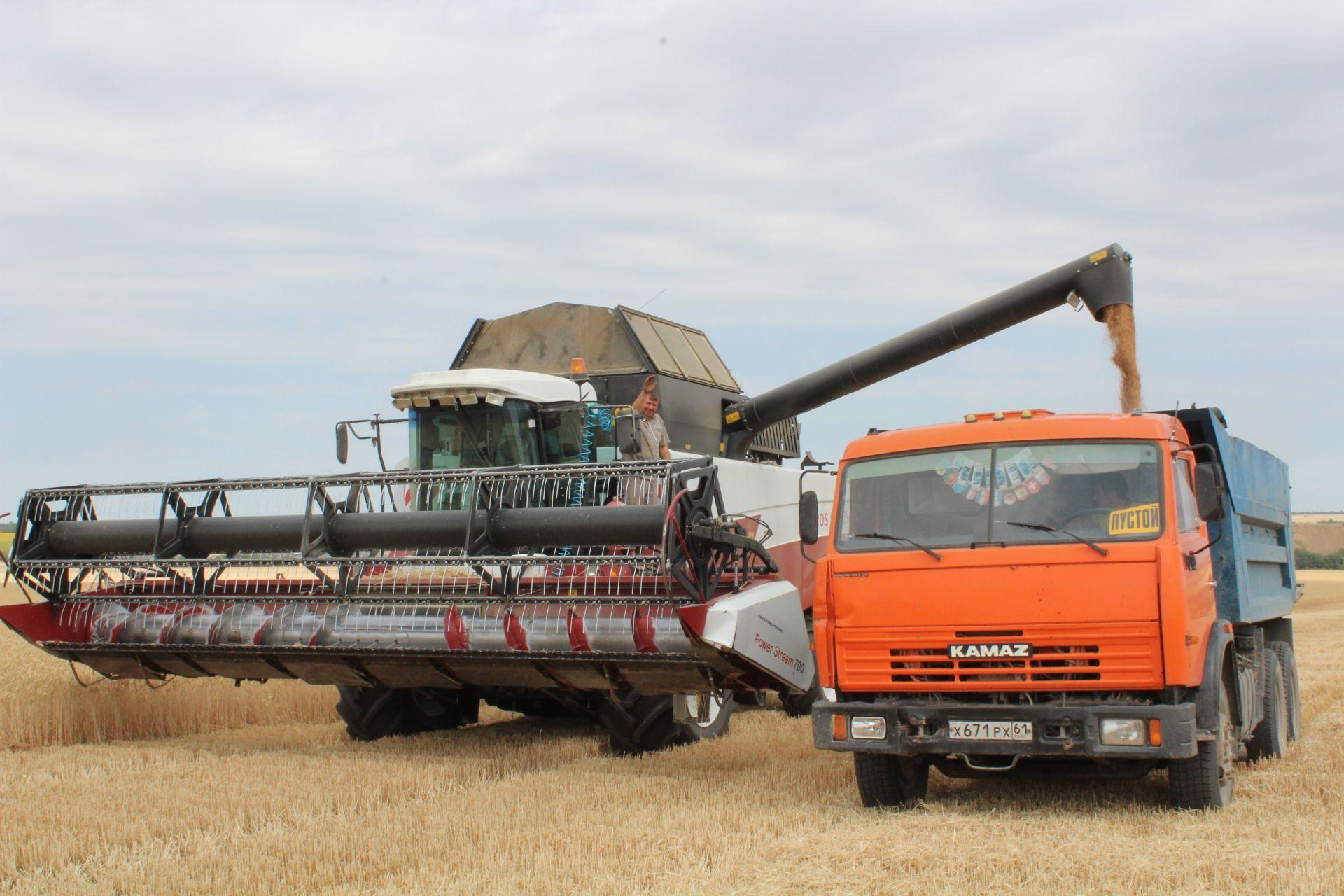 В Белокалитвинском районе завершена уборка ранних зерновых и зернобобовых культур