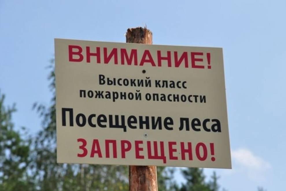 На Дону продлили режим ограничения пребывания граждан в лесах