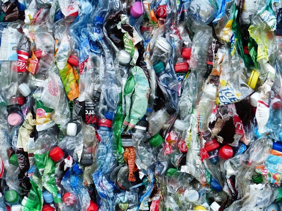 Greenpeace назвал самый распространенный у водоемов России мусор