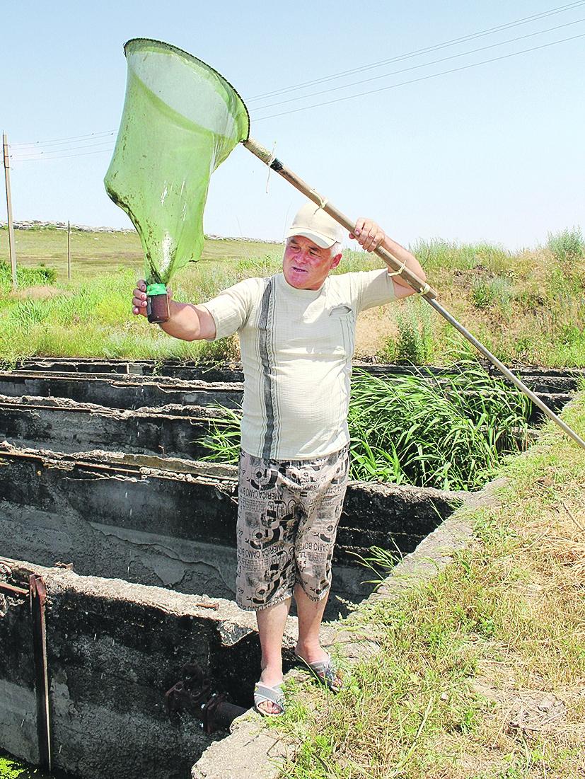 Главный рыбовод АО «Рыбацкий пионер» А.Н. Курносов: «Благодаря каскадной системе наши пруды почти не зарастают»