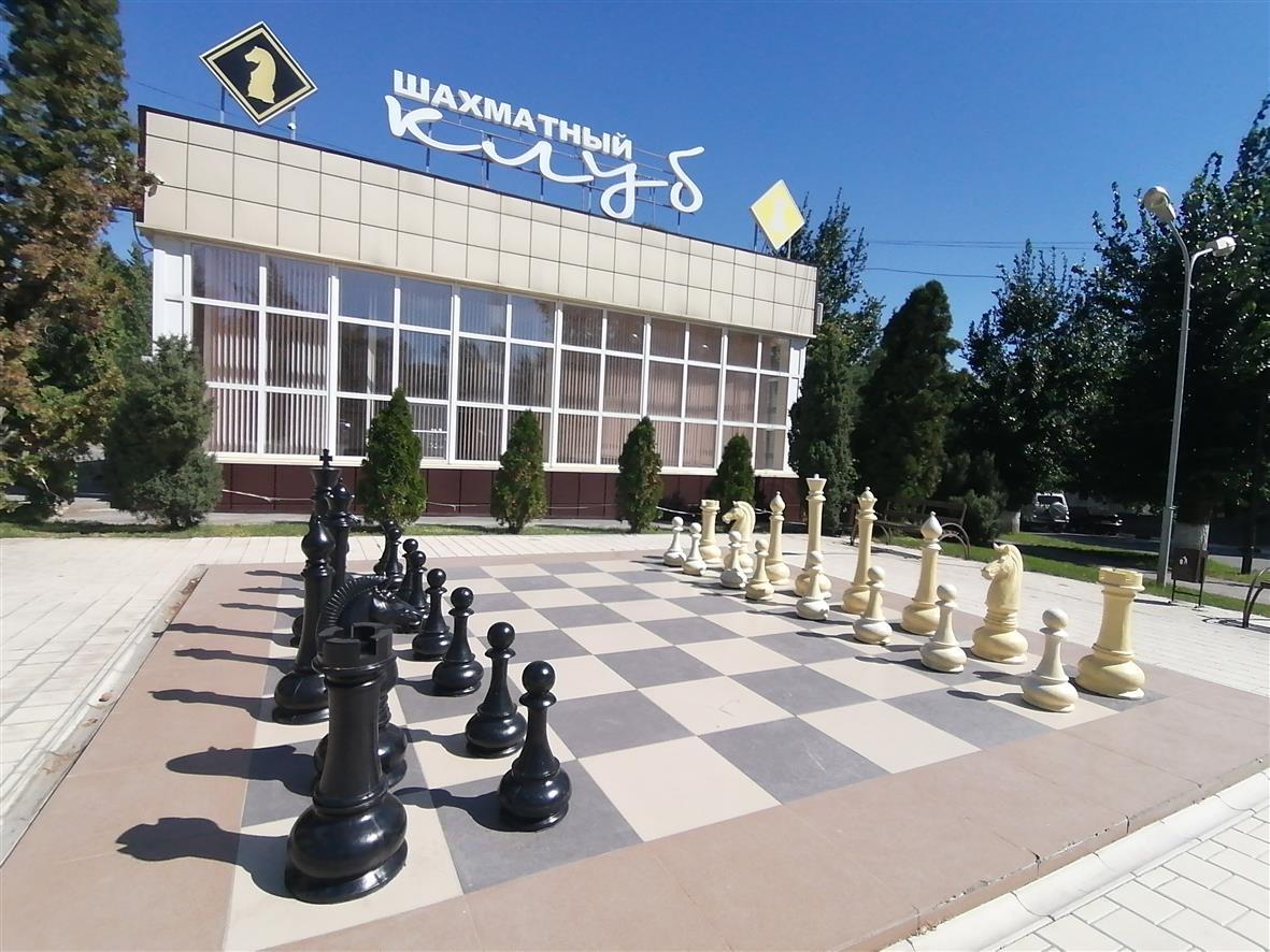 Шахматы по-белокалитвински