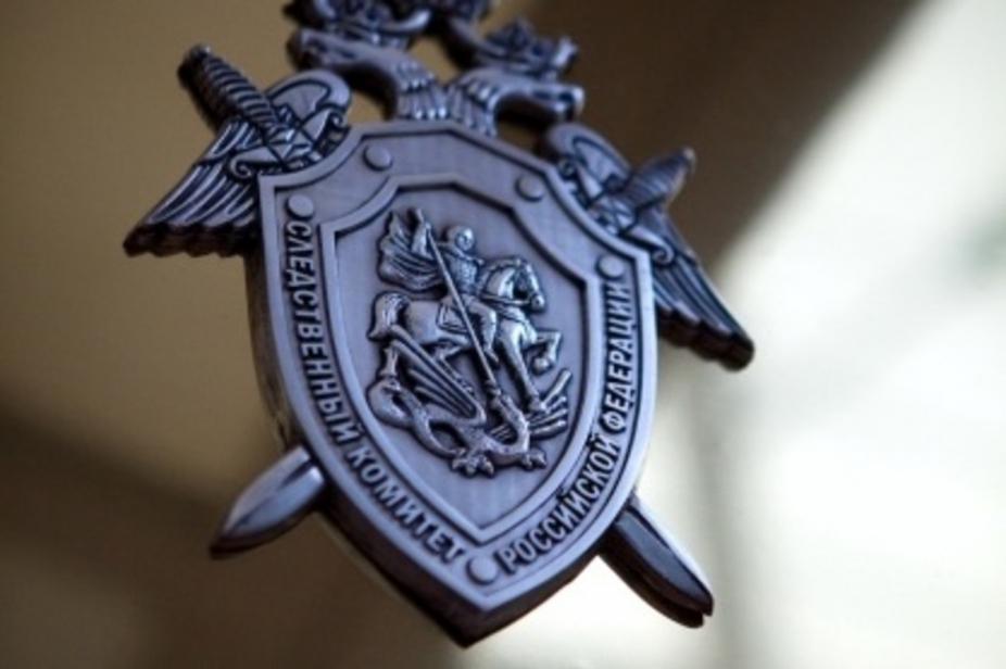 Кураторов «группы смерти» осудили за покушение на убийство школьницы