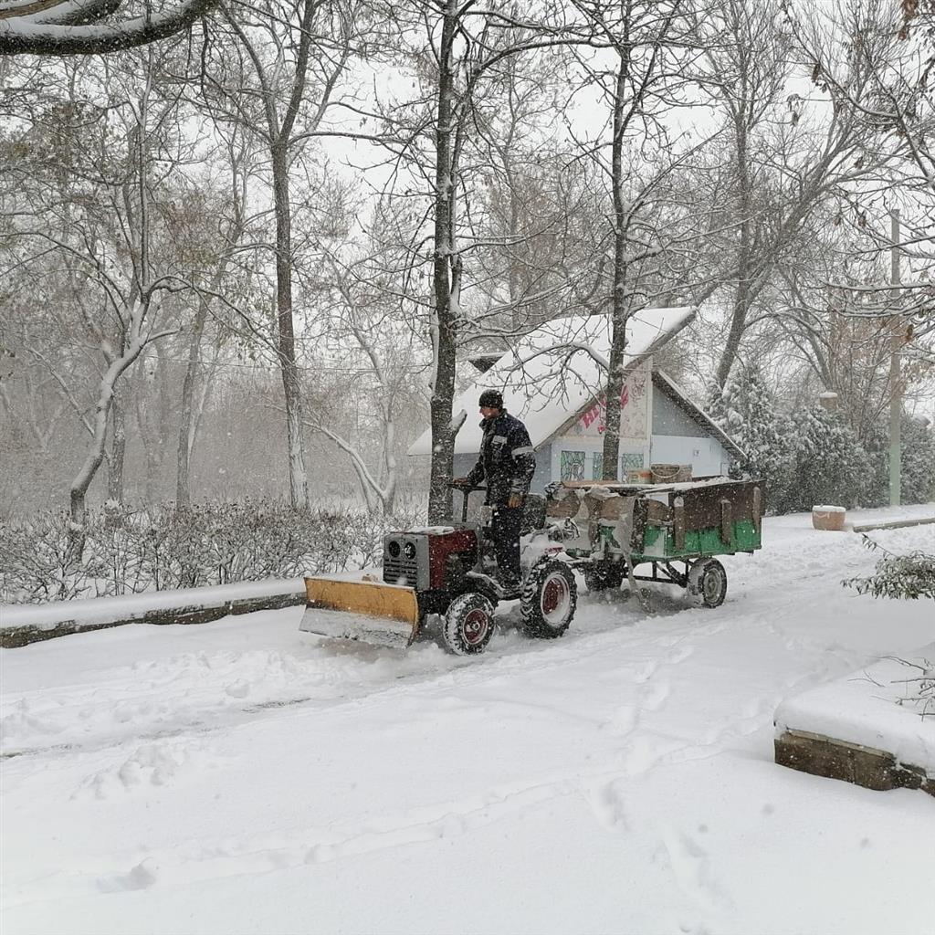 В парке им. Маяковского убирают снег своими силами