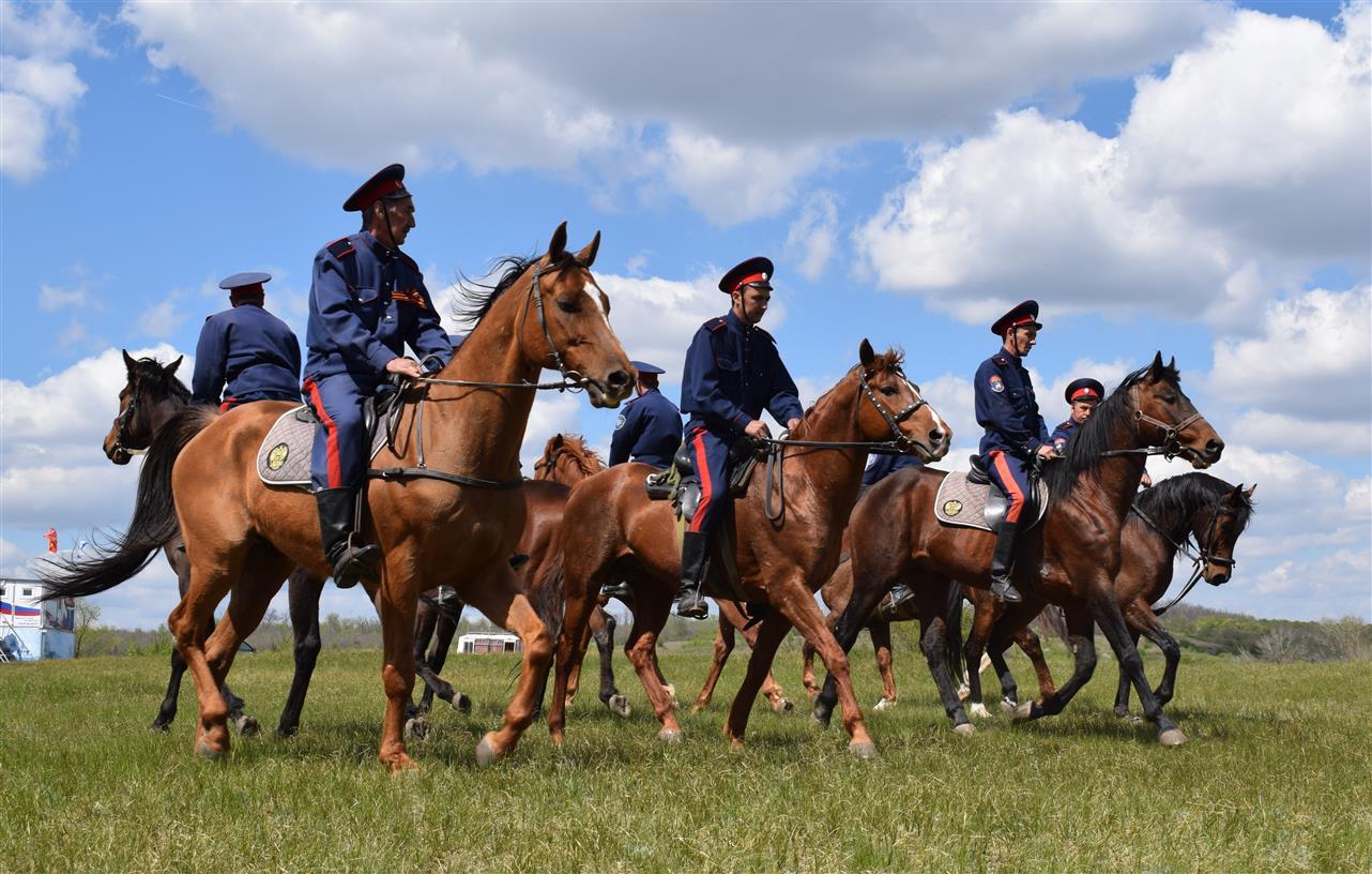Белокалитвинские лошади на службе Всевеликого войска Донского
