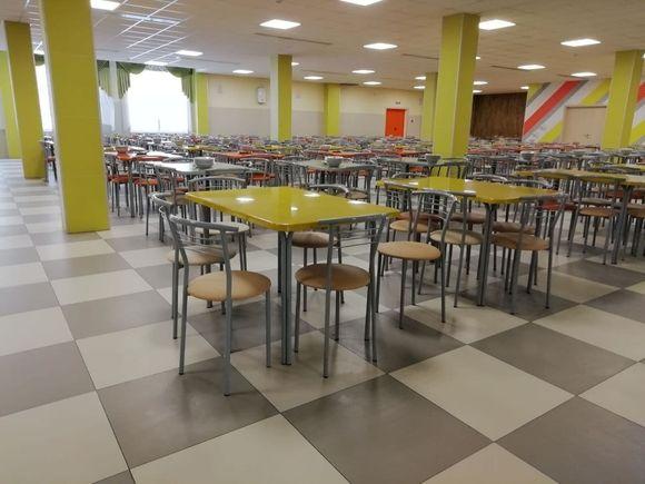 Более 40 школьников отравились в двух школах в Подмосковье