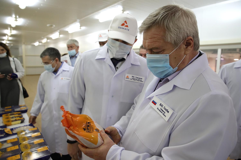 В Миллерове поголовье товарной утки увеличат до 1 млн голов