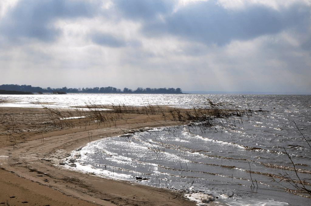 Оздоровление реки Дон может быть выделено в отдельный федеральный проект
