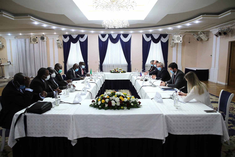 Василий Голубев встретился с официальной делегацией Замбии