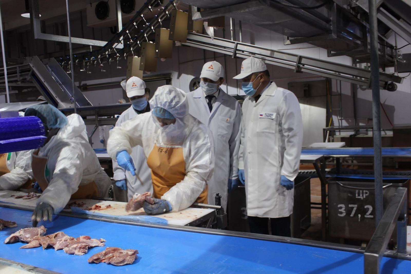 Работа по производству мяса индейки и утки переходит на новый уровень