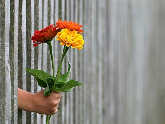 Праздник «не про цветы, весну и женственность» — в Россию пришло 8 Марта