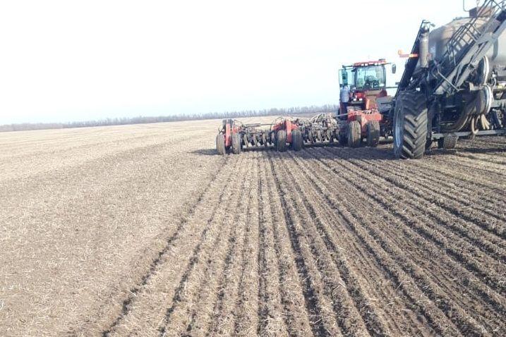 Аграрии южных районов Дона приступают к весеннему севу