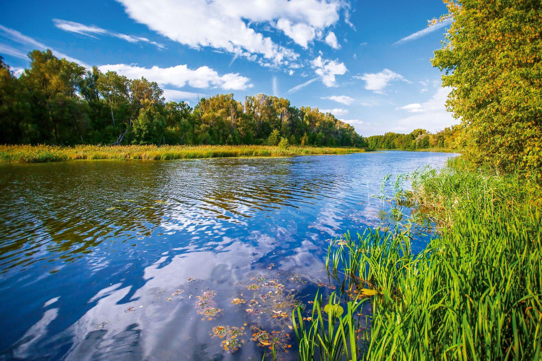 Для оздоровления реки Дон область предложила 239 мероприятий