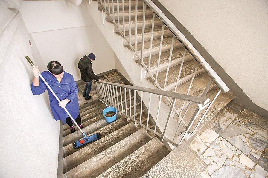 В донских многоэтажках влажная уборка стала ежедневной