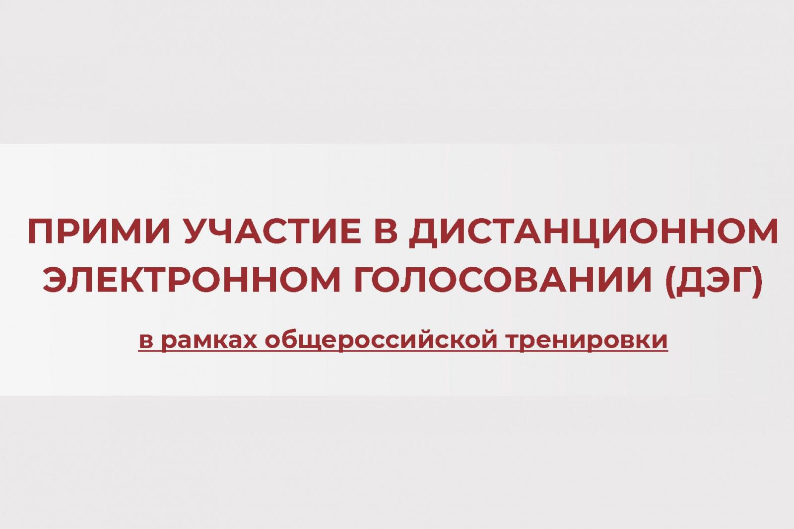 Дончане смогут принять участие в дистанционном голосовании