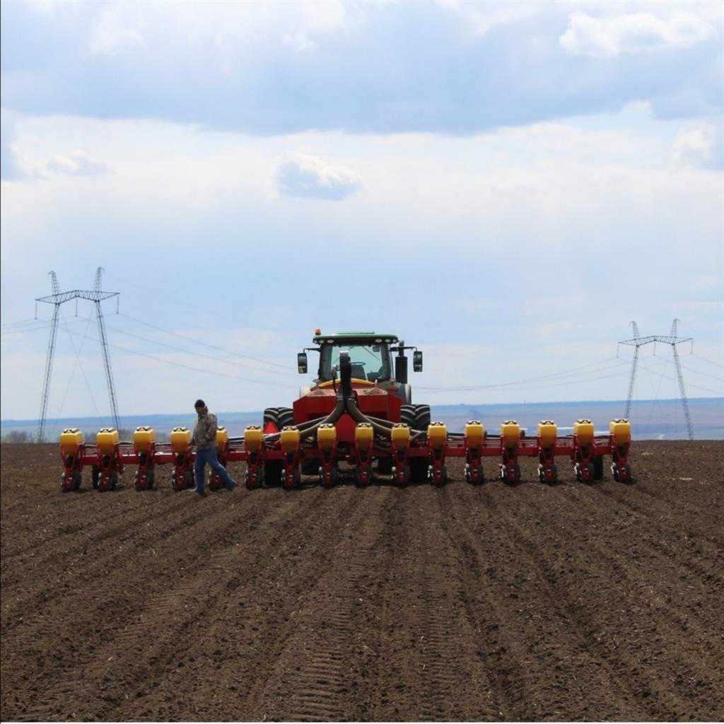 Белокалитвинские аграрии засеяли 68,6 тысяч гектаров озимых
