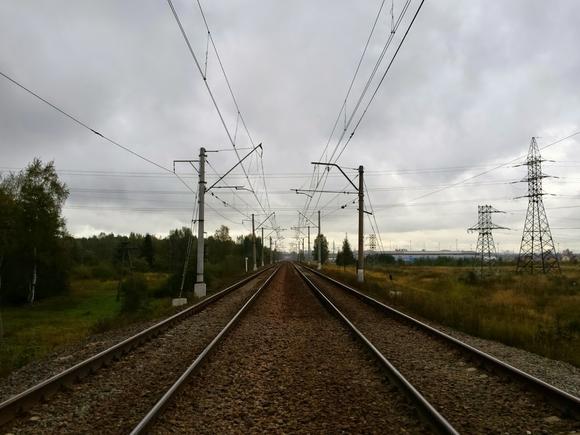 РЖД получили годовой убыток в десятки миллиардов рублей