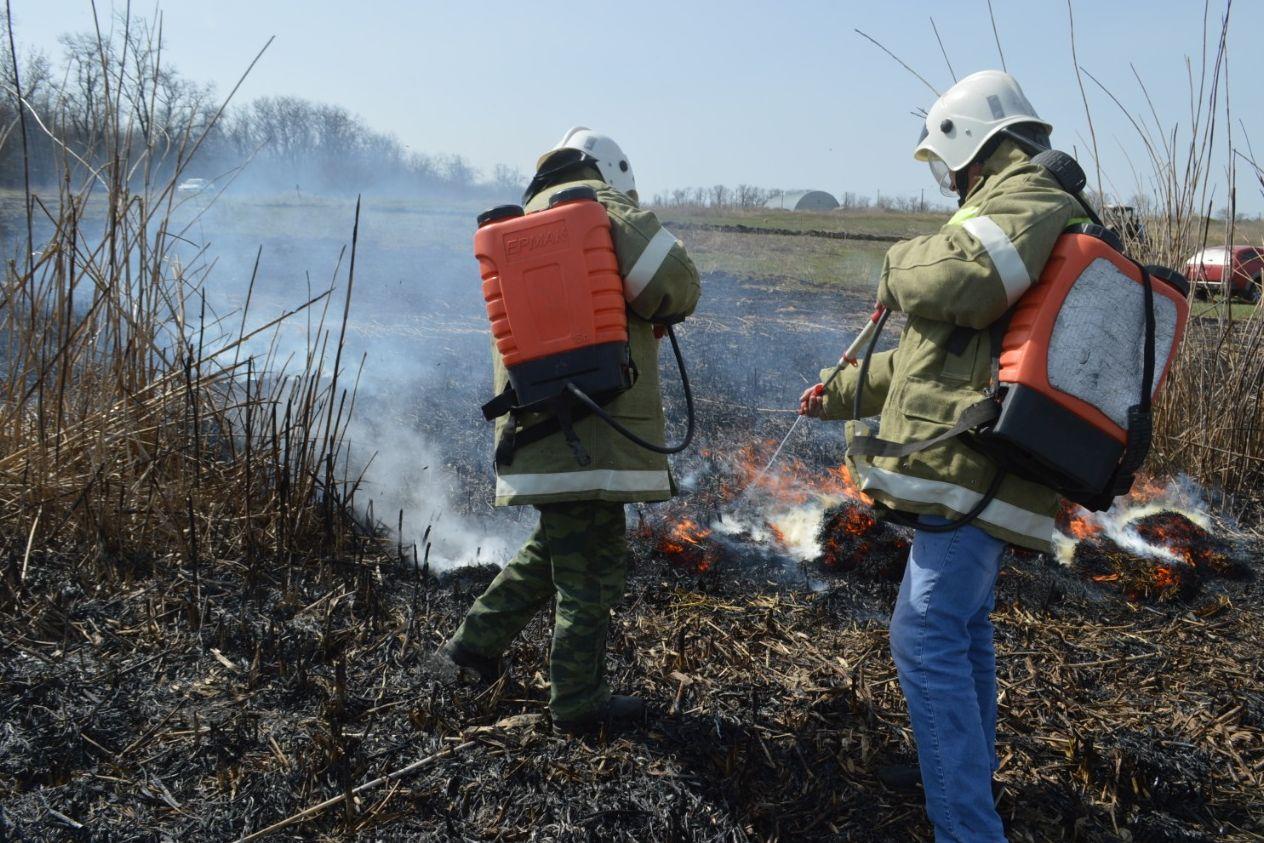 В регионе начал действовать особый противопожарный режим