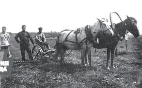20 апреля — 178 лет назад началось переселение крестьян в связи с освоением Сибири