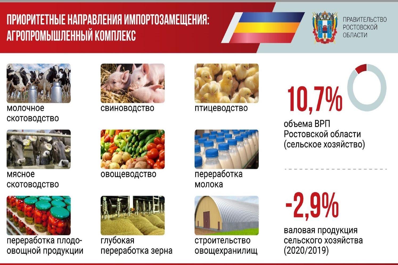 В Ростовской области реализуется 125 проектов, способствующих импортозамещению