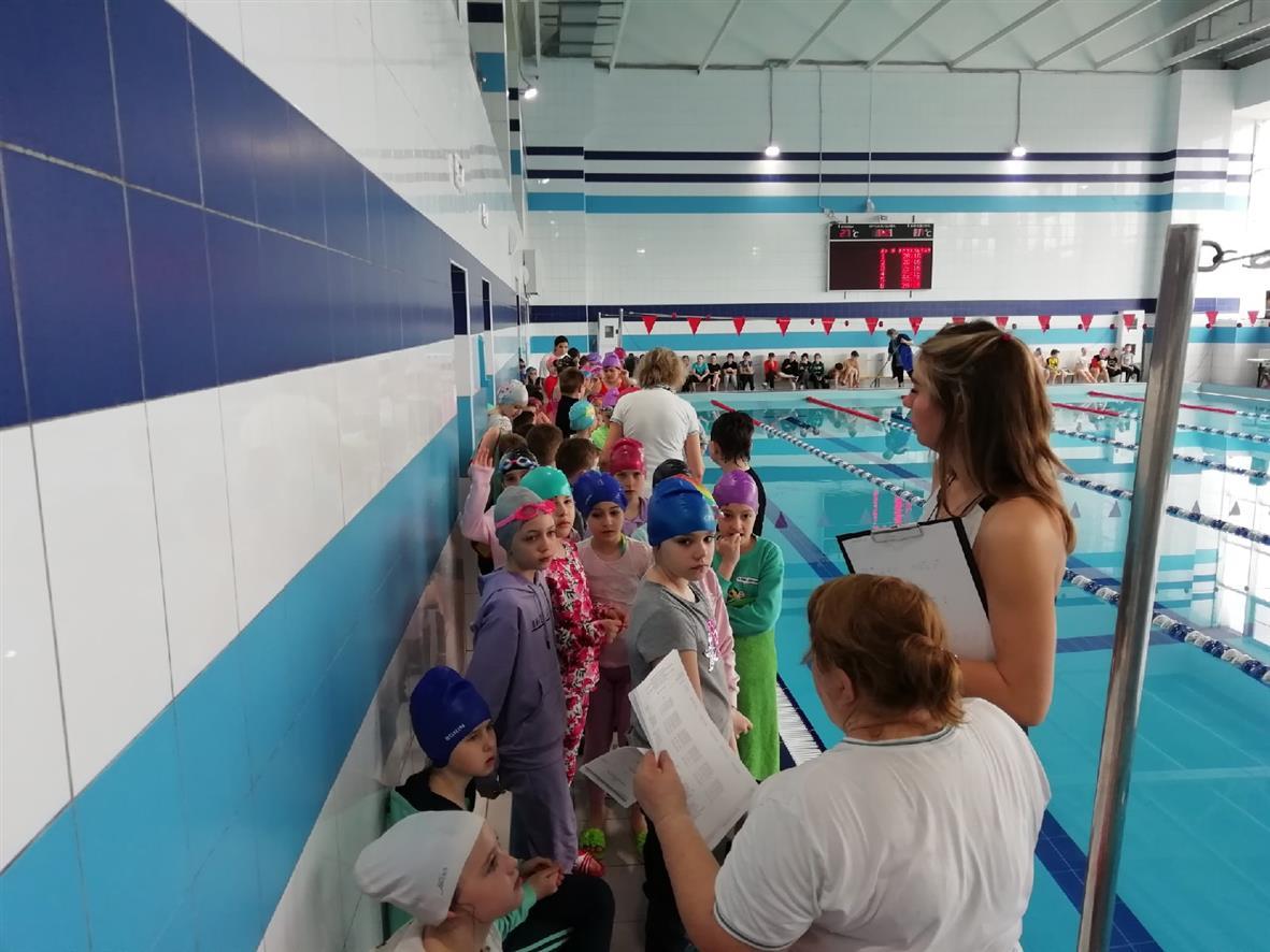 Юные белокалитвинцы соревновались в плавании