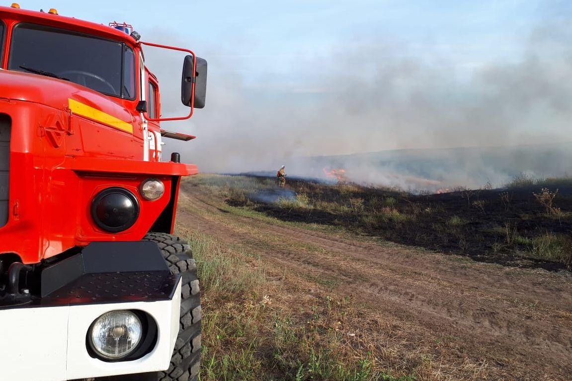 В Ростовской области установлен особый противопожарный режим