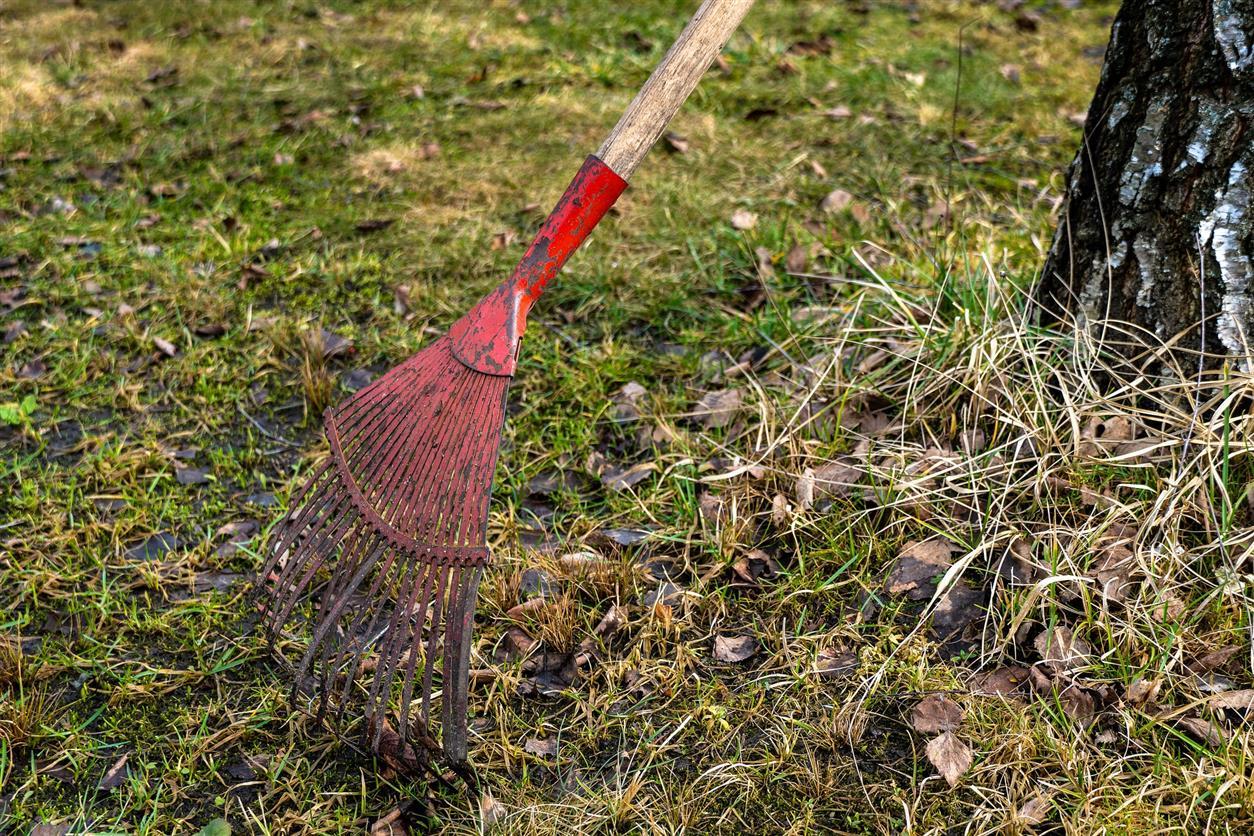 Предстоит уборка района после зимы