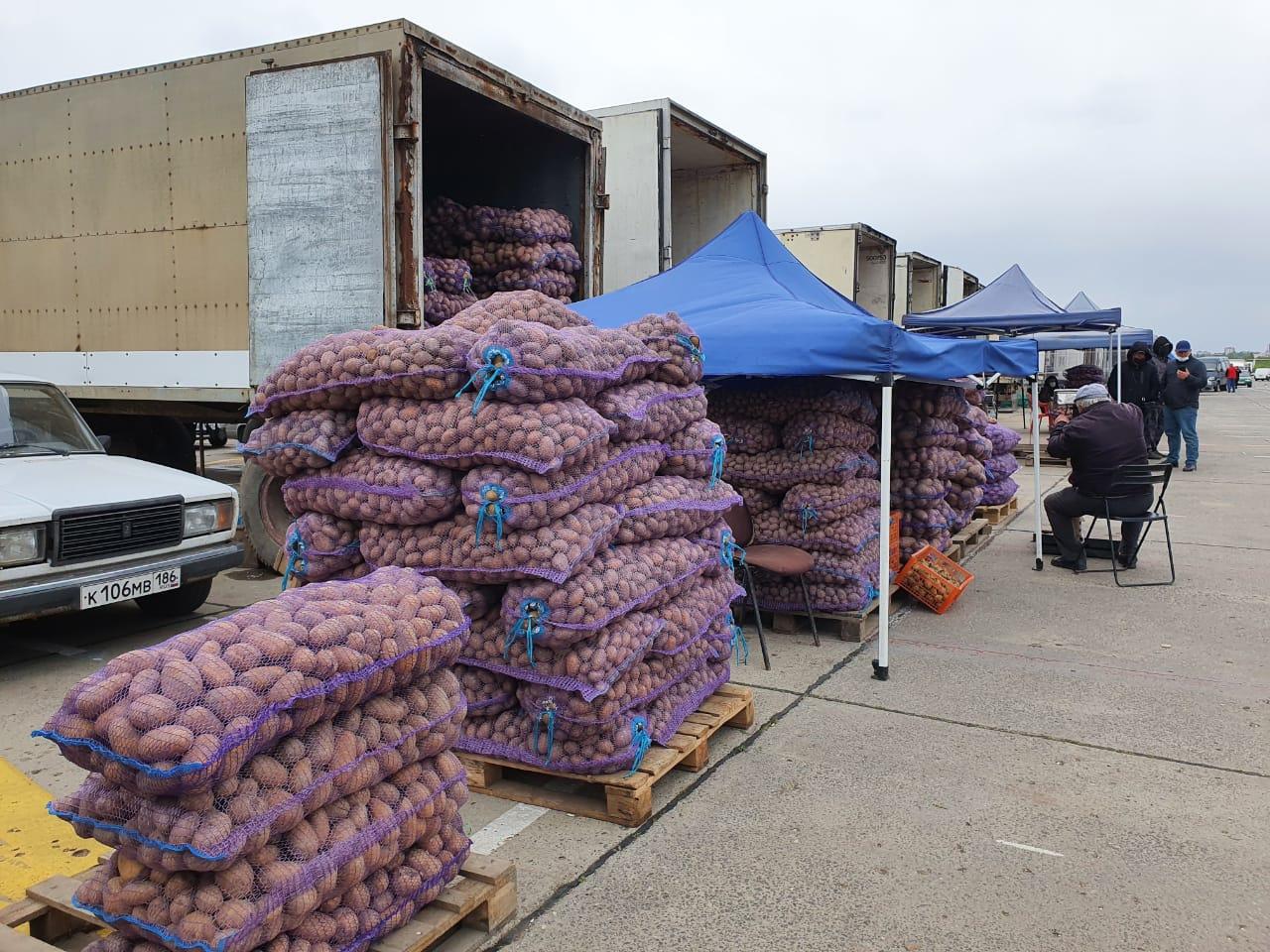 В прокуратуре области впервые прокомментировали блокаду аксайских рынков