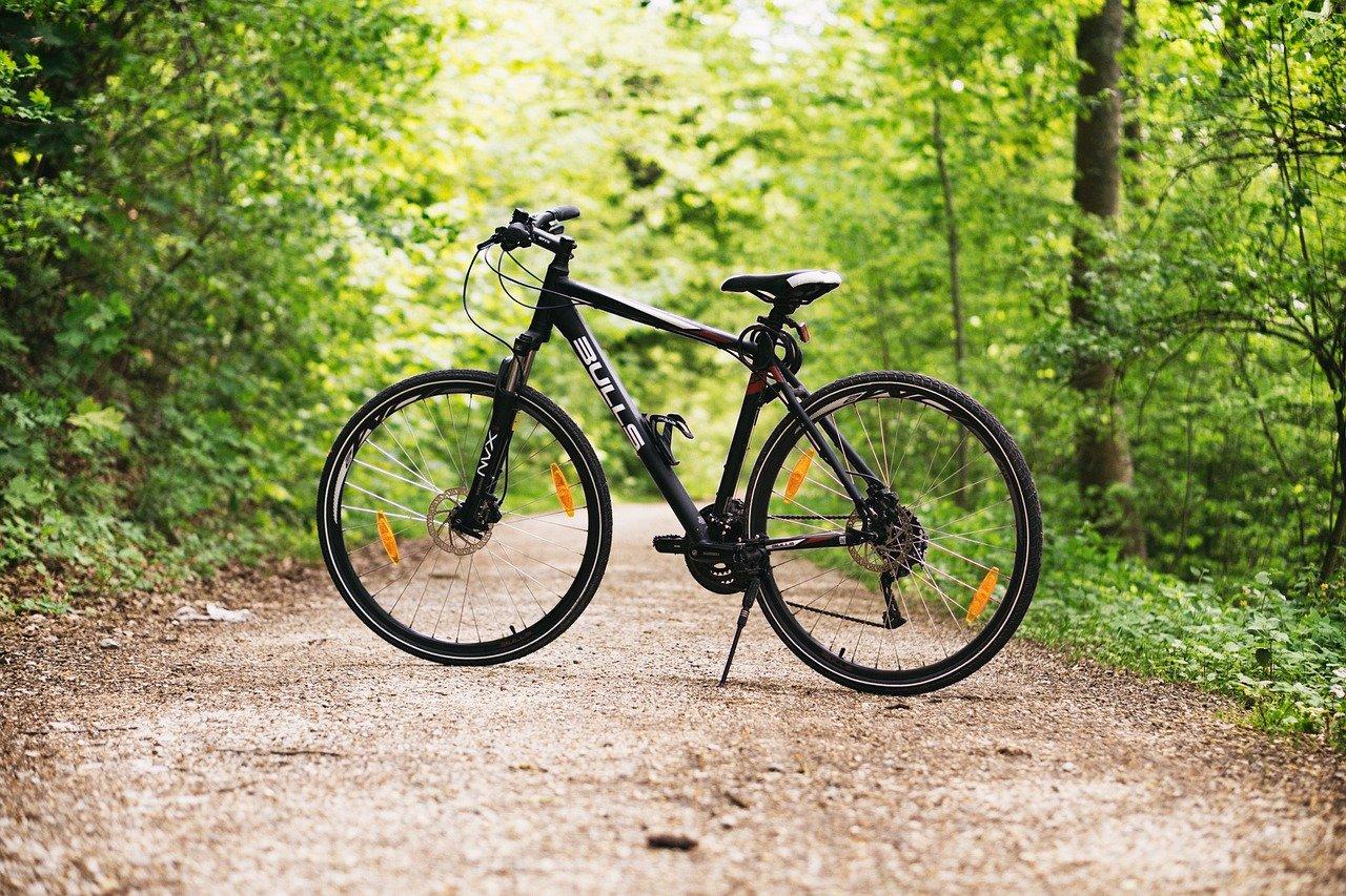 3 июня — Всемирный день велосипеда