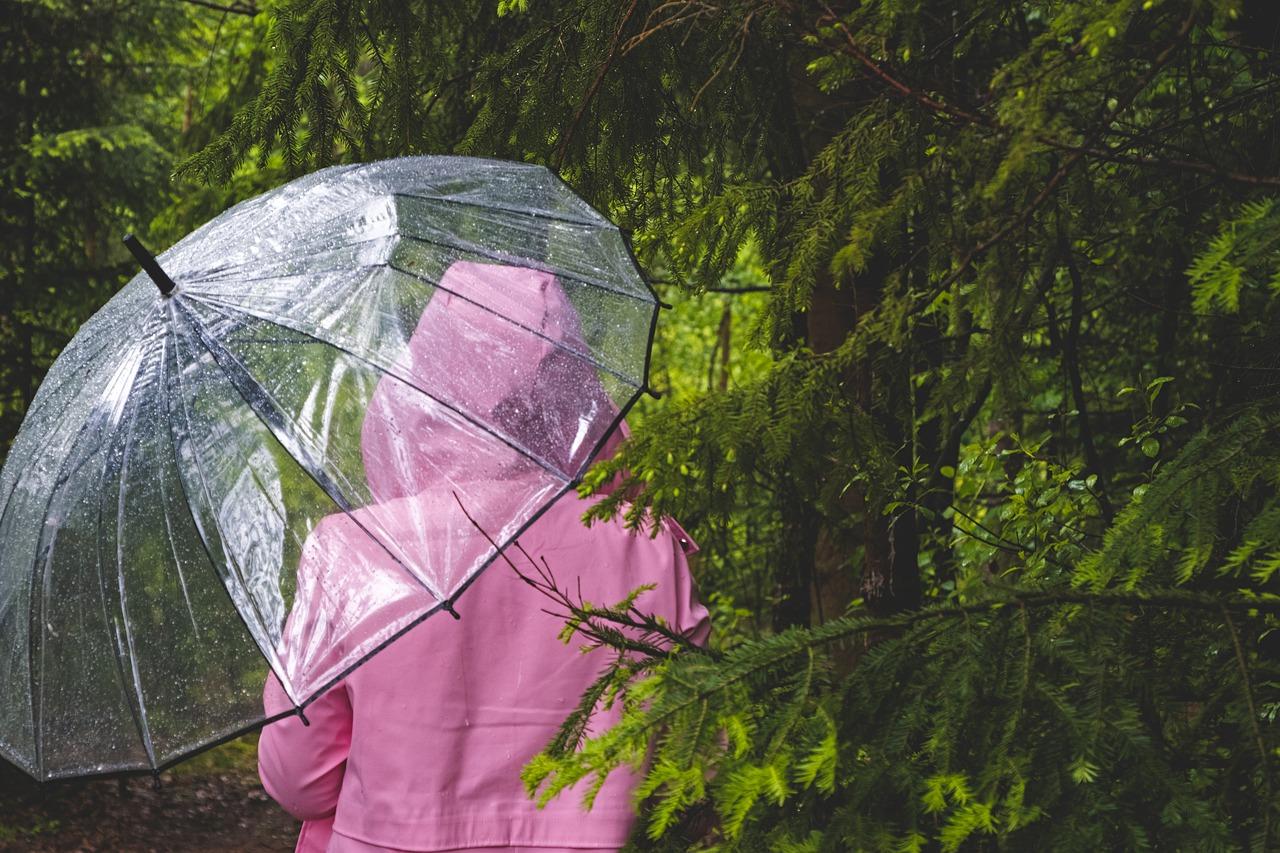 В Ростовской области ожидаются сильные дожди и грозы