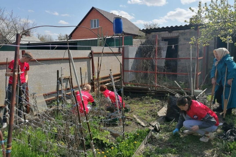 Волонтеры помогают ветеранам в благоустройстве придомовых участков
