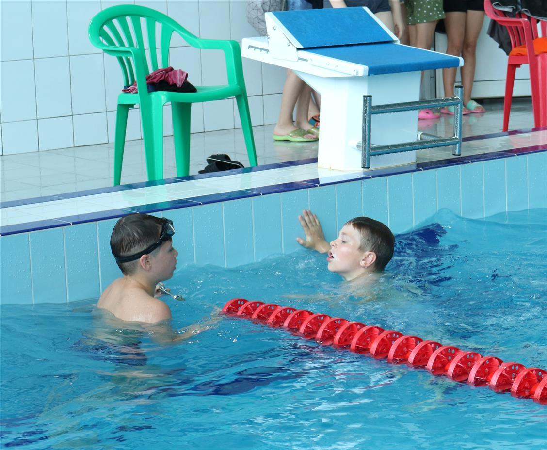 Ежегодный летний чемпионат Белокалитвинского района по плаванию