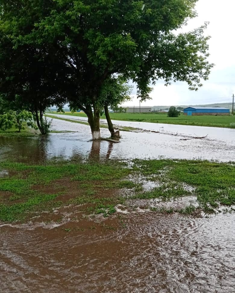Хутор Каменского района подтопило из-за сильного дождя