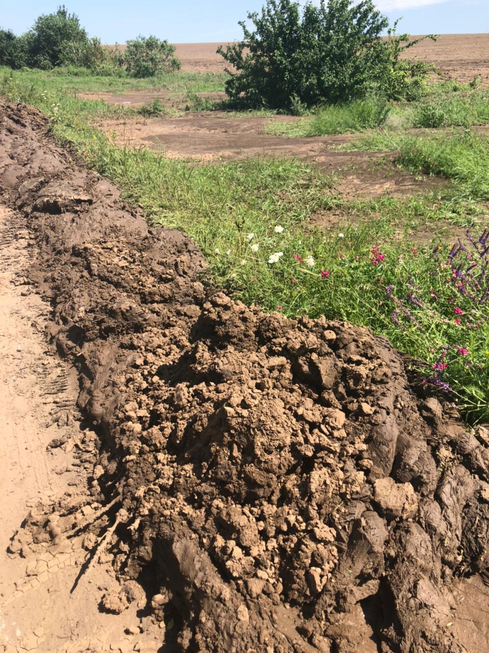 Ливни вымыли землю с полей