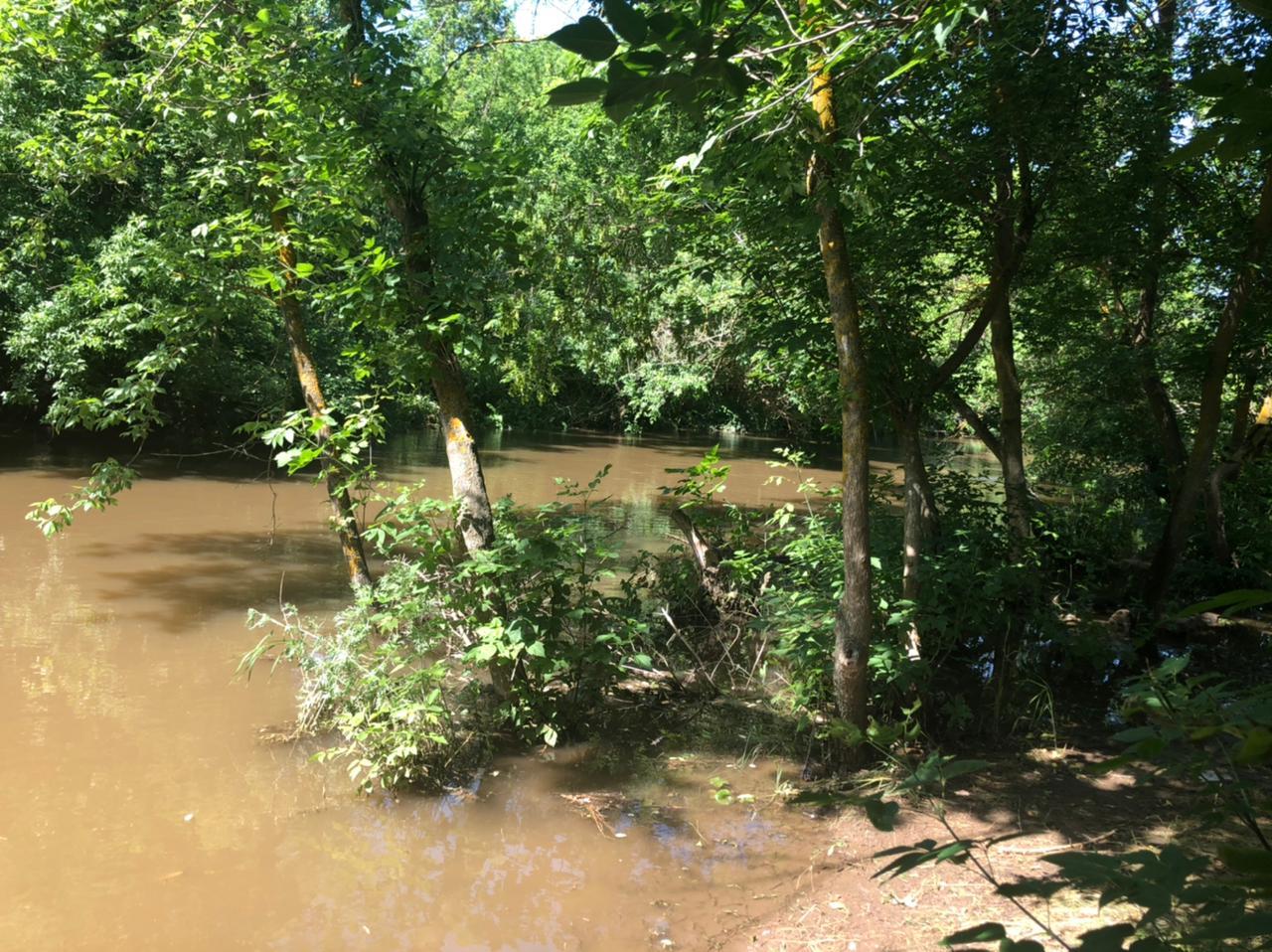 Реки Белокалитвинского района после дождей разлились