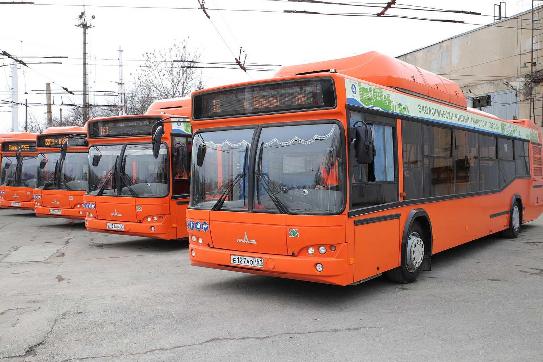 Предприятиям пассажирского автотранспорта выделены средства областной поддержки