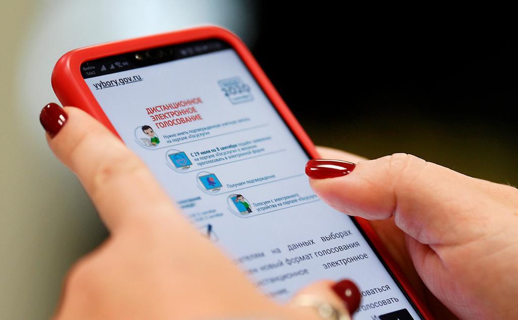 В Ростовской области впервые применят электронное голосование на выборах
