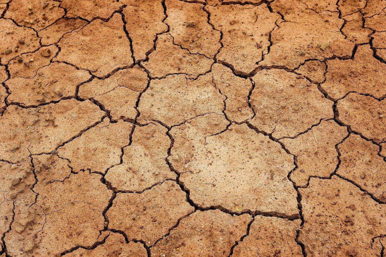 В Свердловской области ввели режим ЧС из-за засухи