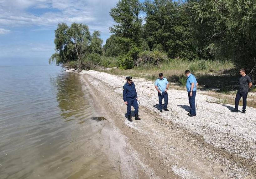 Прокуратура заинтересовалась делом о массовой гибели рыбы в Цимлянском водохранилище