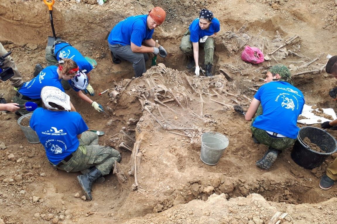 На территории Сальского кирпичного завода ищут останки жертв гитлеровцев