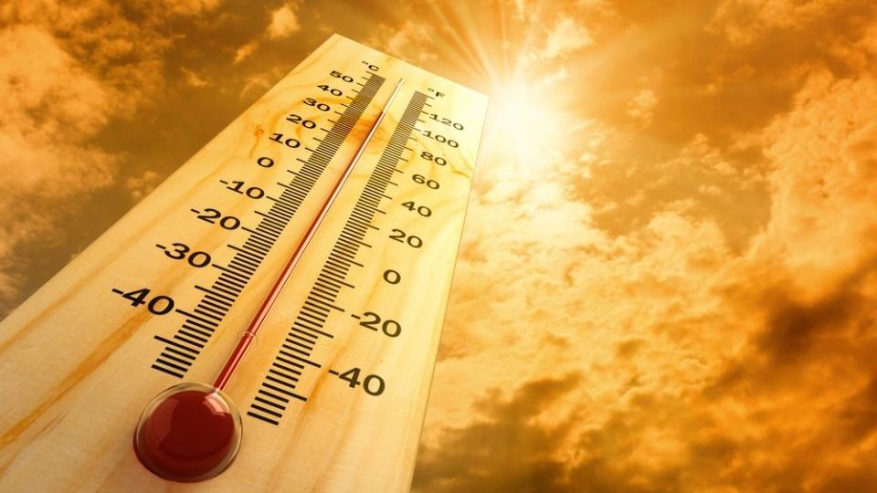На Дону объявили штормовое предупреждение о сильной жаре