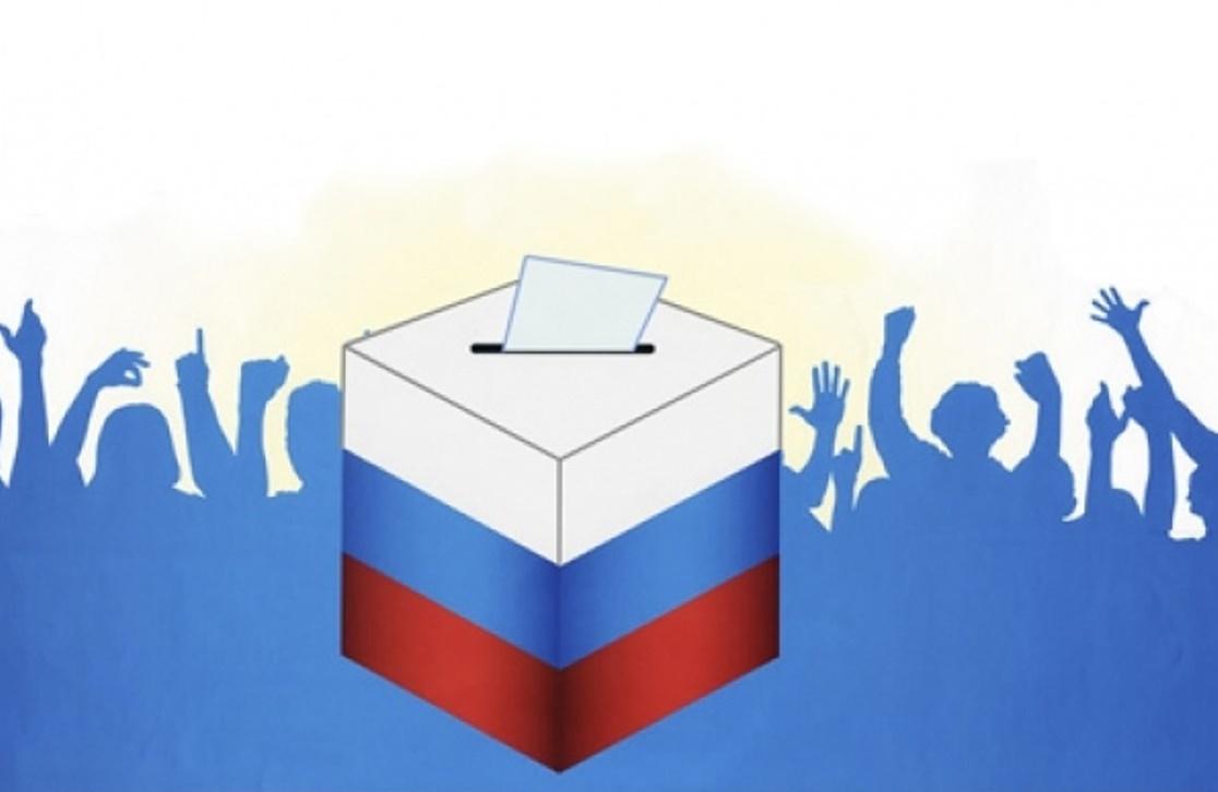 Более 215 тысяч жителей Дона проголосовали дистанционно в первый день выборов