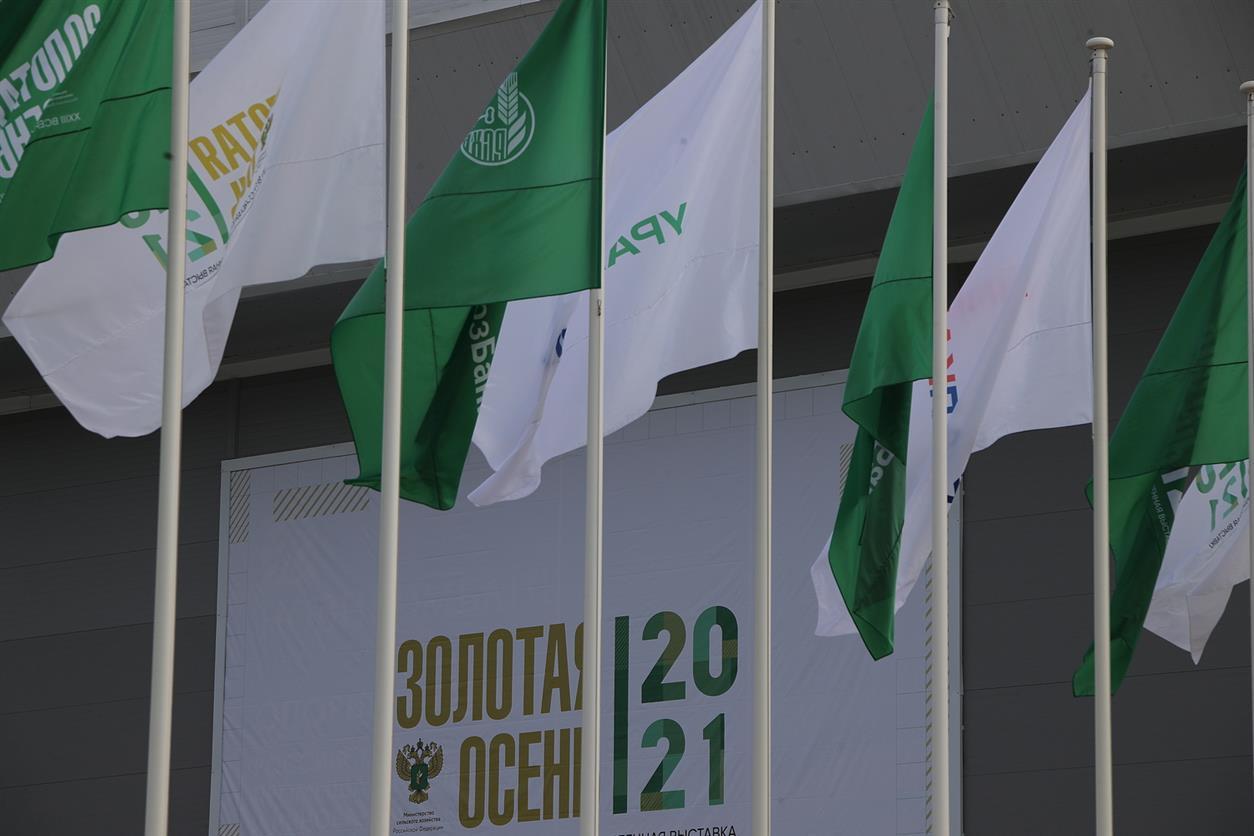 Россельхозбанк продолжит сотрудничать с Донским регионом в сфере реализации проектов АПК