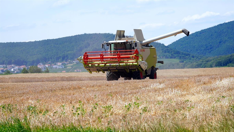Уборка озимых зерновых и зернобобовых культур в Белокалитвинском районе подошла к концу